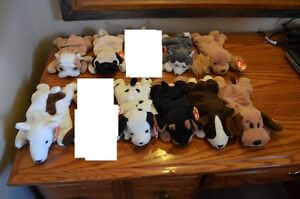 For Sale: Ty Beanie Babies *Retired & Rare* - Set of 13 Dogs Sarnia Sarnia Area image 1