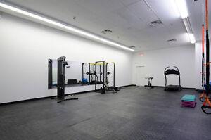 Physio, Chiro or Massage Oakville / Halton Region Toronto (GTA) image 3