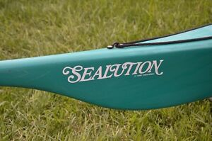 17' Sealution sea kayak