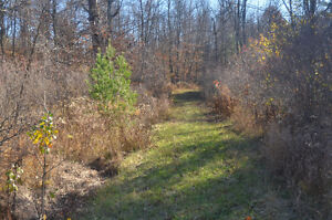 17 ACRE BUILDING LOT WITH LOG CABIN, DRILLED WELL AND 2 PONDS Kingston Kingston Area image 4