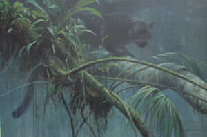 """Shadow of the Rainforest"" Premier Edition Robert Bateman"