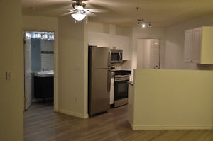 Newly Renovated Downtown Ice District Condo For Rent