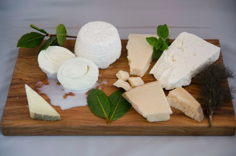 Cheese Producer Seeks Asisstant
