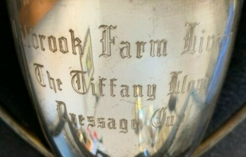 Dressage vintage silver plate vintage horse trophy, trophies, loving cup