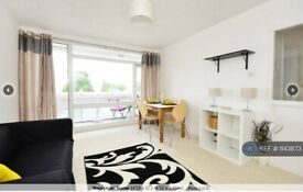 1 bedroom flat in Rushmere House, London, SW15 (1 bed) (#1143873)