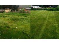 Regular Garden maintenance -Local gardener-Leaf Clearing / blowing -Gardening services-