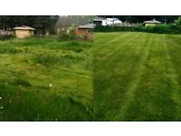 Gardening services-One Off garden tidy up - Lawn mowing - Grass cutting- Local gardener- Hedge