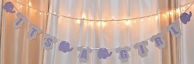 Girl Baby Shower Theme (its a girl baby shower chevronclothing elephant theme purple/gray hanging)
