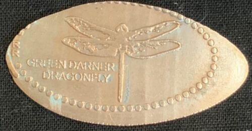 DRAGONFLY INSECT - MUSEUM OF SCIENCE BOSTON MASSACHUSETTS PRESSED PENNY