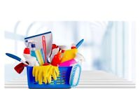 Domestic cleaner/Carer available in Salisbury and surrounding areas
