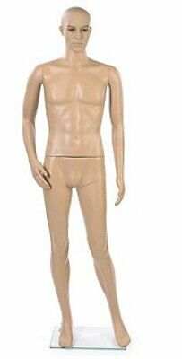Male Full Body Mannequin Fleshtone New Style Free Shipping