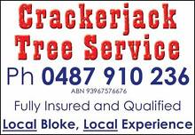 Crackerjack Tree Service Earlville Cairns City Preview