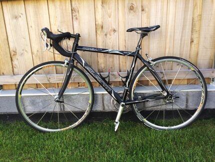 Avanti Corsa road bike Blackmans Bay Kingborough Area Preview