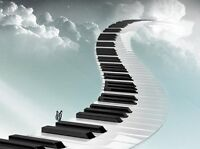 Pianist - Social functions