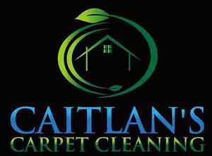 Affordable Carpet and Upholstery Cleaning 7804990985 Edmonton Edmonton Area image 1