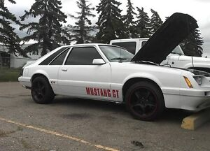 Looking for a cowl hood for my 86 mustang
