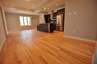 Fully renovated 5 bedroom lower near Concordia Loyola campus NDG
