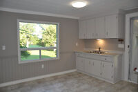 Updated 3 bedroom, 1 bath country home