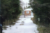 Howley highway,NL. cabin with 1.5 acres.