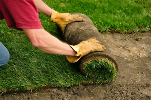 SOD INSTALLATION ONLY  $0.80 PER  SQFT  FOR  NEW HOME NE NW .