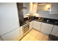 Magnificent 3 bedroom 2 bathroom flat in a private building near UCL fitted kitchen available 16 Aug
