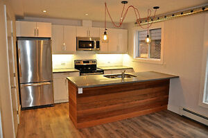 Newly renovated rustic modern 2 bedroom steps from Downtown London Ontario image 2