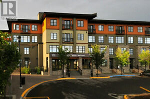 Venu Urban Residence in Red Deer, thats elegant & contempory