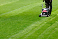 ** Grass cutting by student: NOTL, St. Catharines, Thorold, NF