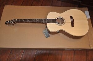 Brand New Seagull SWS Concert Hall with Electronic Pickup