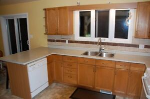 Kitchen cupboard cabinets and counters for sale - NEW PRICE Stratford Kitchener Area image 4