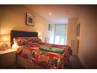 E14 room to let 245p/w
