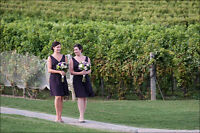 Wedding photographer booking for Fall and Winter 2015