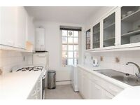 AMAZING BRIGHT TWO/2 bed apartment* CHEAP £410pw with some BILLS* Living room* Westminster/Pimlico
