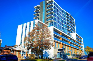 Luxurious Three Bedroom Suite at 255 Sunview St *Move-In Ready*