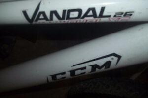 Man and Ladies Bike