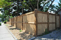 Bamboo Fences on Sale