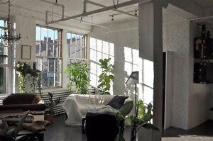 Cherche Coloc pour loft industriel Calme et lumineux. 1er Juin