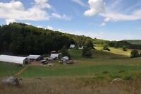 Gorgeous 48 acre country property - perfect for horse lovers!
