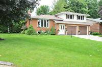 458 Thede Dr Port Elgin - 3 Level Sidesplit