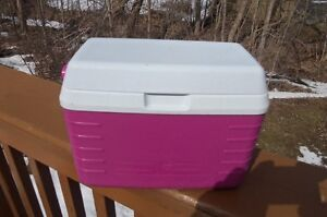 Mini Rubbermaid Lunch Cooler--holds 3 cans! Great for travel!