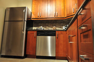 Newly Renovated 3 BDRM in The Heart of the City Algonquin