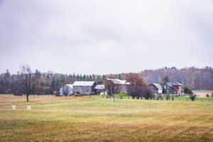 FARM FOR SALE Great LOCATION