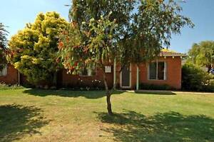 Redcliffe Villa Open by Appointment Redcliffe Belmont Area Preview