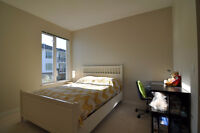 2 BR 1 WC at Mayfair in Richmond New Building