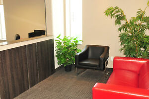 Rent a Furnished Office Suite by the Day, Month or longer