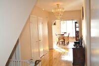 Grand et confortable logement/big & cosy apartment (St-Laurent)
