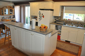 Renovation Sale, Kitchen Cabinets, Fridge, Gas Fireplace