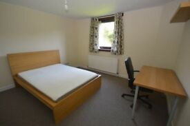 STUDENTS: Spacious 3 bedroom HMO ground floor flat with WiFi in Tollcross available AUGUST