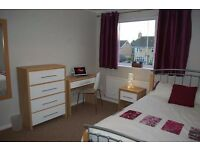 FANTASTIC and SPACIOUS ENSUITE ROOM IN LEWISHAM!!