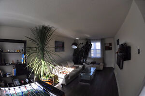 Looking for flatmate, downtown, no lease.